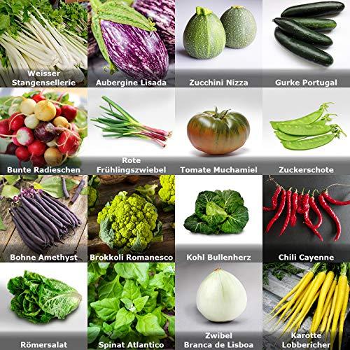 Gartengemüse Pflanzen Samen Set