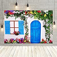 写真撮影の背景夏の田舎の家ブルーウッドドア窓花植物ポートレート背景写真スタジオ Photozone-300x200CM