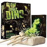 Dr. Daz Nachtleuchtender Dinosaurier Skelett Ausgrabungsset für Kinder Dino Knochen Ausgrabung Spielzeug Archäologie Paläontologie Geschenk