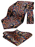HISDERN red blue Cravat for Men Silk Handkerchief Wedding Cravats Paisley Floral Ascot Tie & Pocket Square