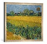 Kunst für Alle '–Fotografía enmarcada de Vincent Van Gogh Visión en Arles con Iris Flores en Prime...