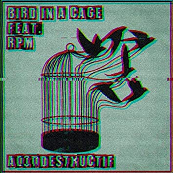Bird in a Cage (Autodestructif)