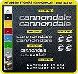 Code 0089- Cannondale Fahrrad-Aufkleber, selbstklebend, 12Sticker, Auswahl von Farben - Argento cod. 090