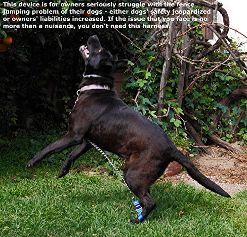 LowJump Jump Restraint Harness for Dogs