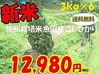 平成28年新潟県産特定産地米 (魚沼産特別栽培米3㎏×6)