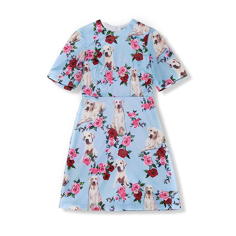 WYYY ドレス 夏の季節 ショートスカート 半袖 O襟 印刷 青 セレブリティ シフォンドレス イブニングドレス (サイズ さいず : S s)