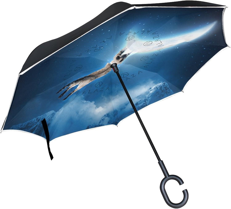 ALAZA Cat blueee Night Sky Moon Ingreened Umbrella Double Layer Windproof Reverse Folding Umbrella for Car With C-Shape Handle