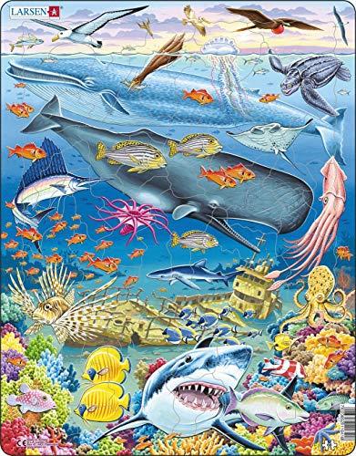 FH20 Vida Marina en el Océano Pacífico, Puzzle de Marco con 66 Piezas