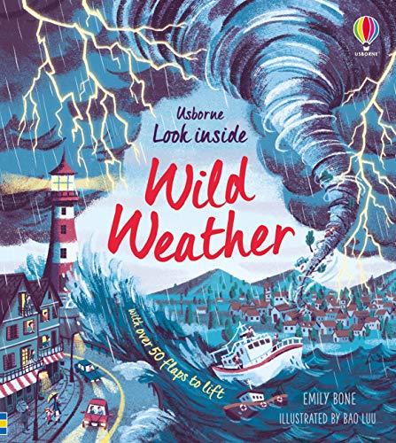 Bone, E: Look Inside Wild Weather
