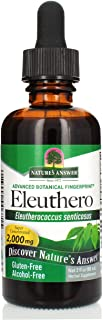 Nature's Answer Alcohol-Free Eleuthero Root, 2-Fluid Ounces | Vegan | No Preservatives Gluten Free Eleuthero Extract