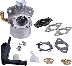 Panari 798653 Carburetor for Briggs & Stratton 697354 790290 791077 698860