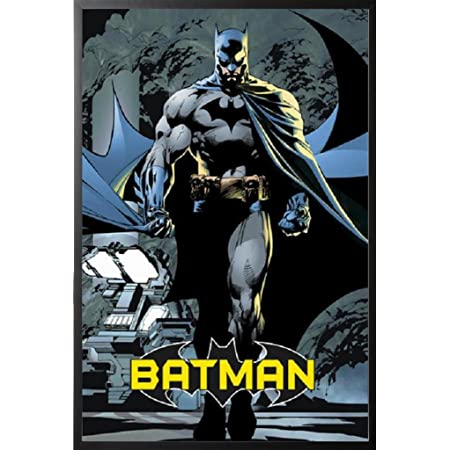 "size: 24/"" x 36/"" fast shipping BATMAN 80TH ANNIVERSARY posterprint"