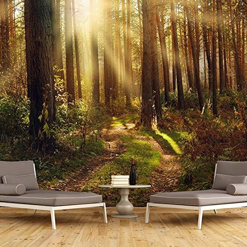 Posters Para Pared Árbol Del Bosque Soleado Dorado 350X250Cm Foto Wallpaper Comedor Sala De Estar Sofá Telón De Fondo Pintura De Pared Mural De Pared