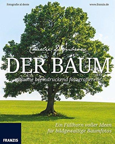 Der Baum: Bäume beeindruckend fotografieren. Fotografie al dente