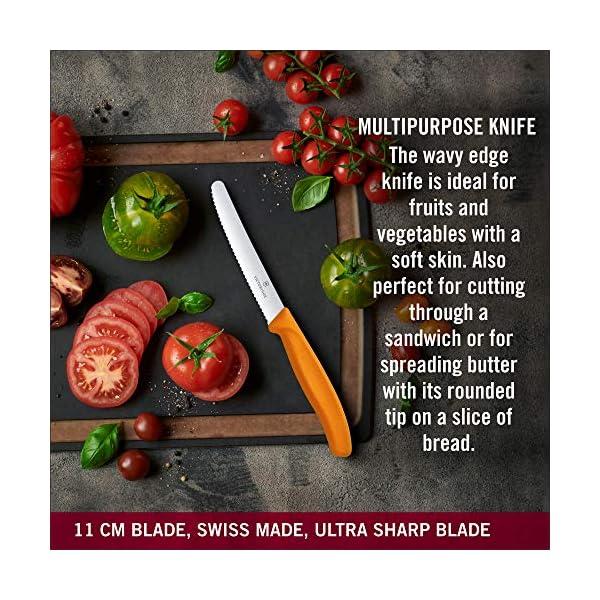 Victorinox Kitchen Knife, Stainless Steel Multipurpose Table Knife for Dining and Vegetable Chopping, Serrated Edge, 11… 4 61v+ri7dlmL