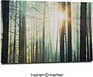 Modern Salon Theme Mural Fairy Foggy Forest Mist in The Woods Enchanted Wilderness with Sunbeams Image Decorative Painting Canvas Wall Art for Home Decor 24x36inches, Teal Brown