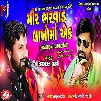 Meer Bharavad Lakho Ma Ek - Single