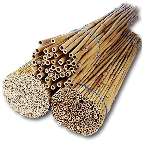 Hiss Reet® Schilfrohrhalme Mix als Insektenhotel Füllmaterial I 3er Kombi Set I Ideal auch als Niströhren für Wildbienen, Bienenhotel geeignet I Verschiedene Längen (L - ca. 80-110 cm Länge)
