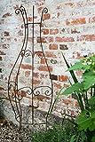 KUHEIGA Rankgitter Metall Rost halbrund zum Stecken Steckzaun 150 x 55cm Rankhilfe -