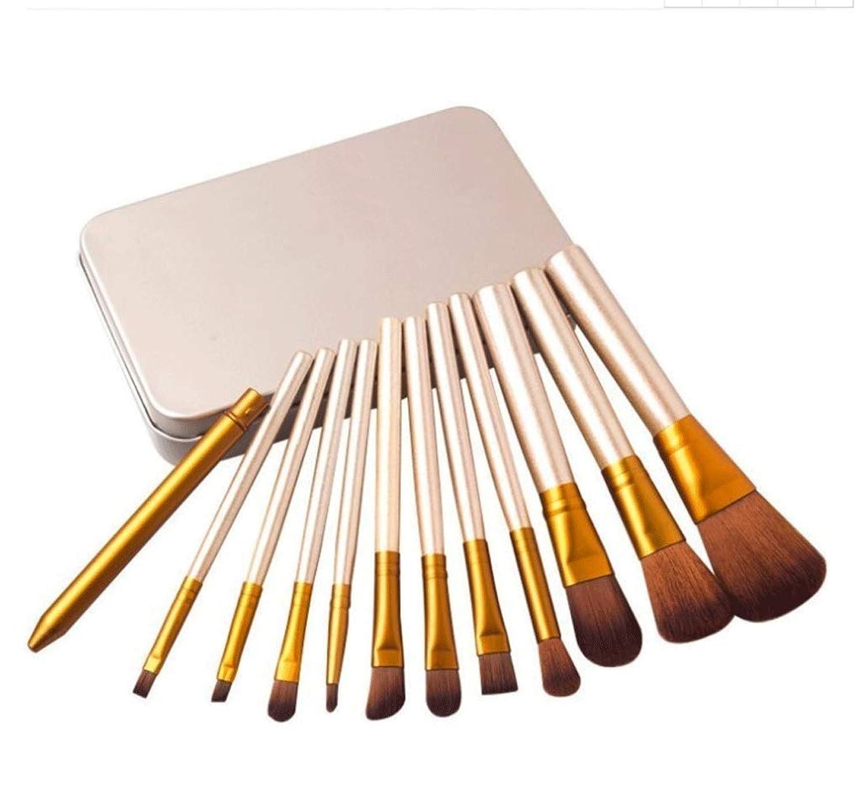 チャペルスイス人添加MAKE-UP BRUSHES HOME 化粧ブラシプロフェッショナル12個入りアイアンボックス化粧道具