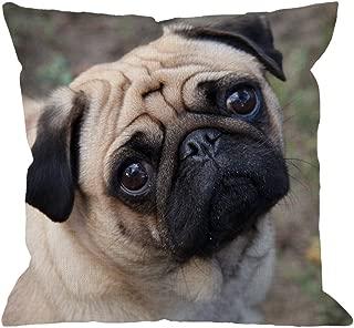 Best pug throw pillow Reviews