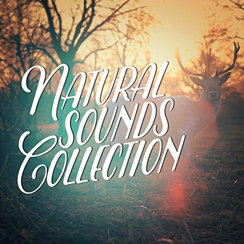 Natural Sounds Collection
