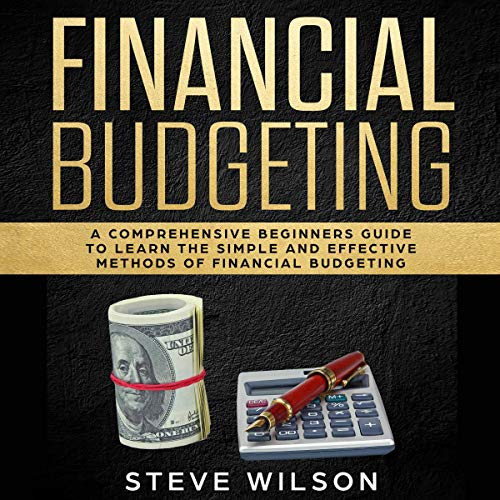 Financial Budgeting Audiobook By Steve Wilson cover art