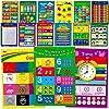 教育用ポスター アルファベット 形 色 数字 1-100 掛け算表 曜日 月 月 お金 感情 人体 時間 反対 季節 天気 動物 15枚 16X11