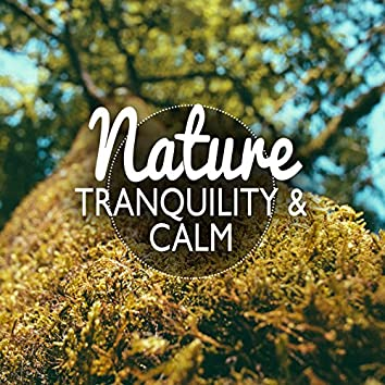 Nature: Tranquility and Calm