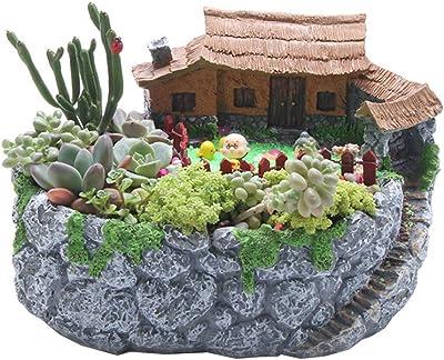 QHWJ Hada del jardín suculento de la Maceta, la Resina Suculentas Plantas en Maceta Crafts Decoración Fairy Garden House, Gris: Amazon.es: Jardín
