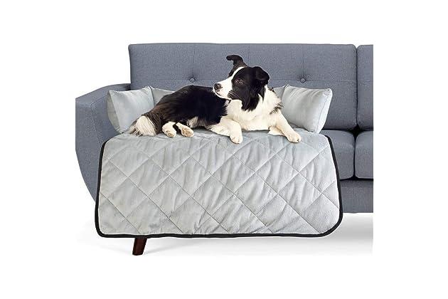 Best sofas for dog | Amazon.com
