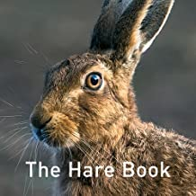 the hare book graffeg