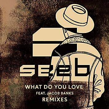 What Do You Love (Remixes)