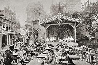 8 x 10 Old Vintage Photo Moulin-Rouge-Paris-1900-Elephant-Garden