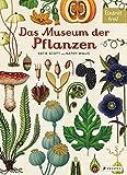 Das Museum der Pflanzen: Eintritt frei! - Katie Scott
