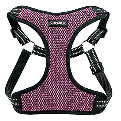 Voyager Step-In Flex Dog Harness - All Weather Mesh, Step In Adjustable Harness for Small and Medium Dogs by Best Pet Supplies - Magenta Base, Medium