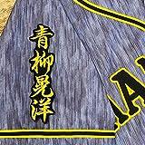阪神 タイガース 刺繍ワッペン 青柳 晃洋 ネーム 2 黒布 応援 ユニフォーム