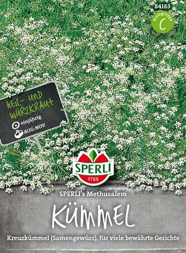 ScoutSeed Sperli - Kümmel Sperlis Methusalem-Kreuzkümmel 84163