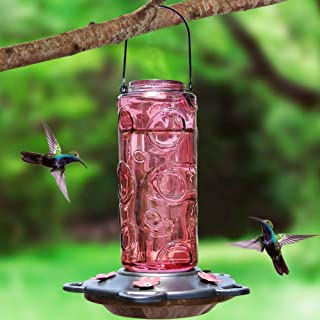 Juegoal 28 oz Glass Hummingbird Feeders for Outdoors, Red Wild Bird Feeder with 5 Feeding Ports, Metal Handle Hanging for Outdoor Garden Tree Yard