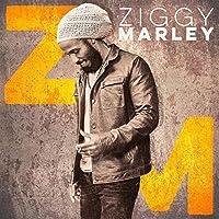Ziggy Marley [Analog]