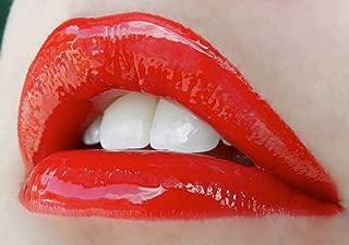 BLU RED Fall Lipstick Lip Color Red LipSense by SeneGence