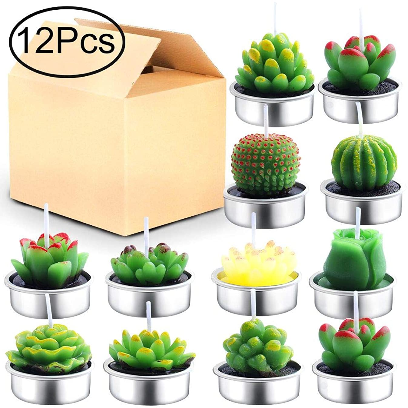 Outee Cactus Tealight Candles 12 Pack Handmade Delicate Succulent Cactus Candles Flameless Aromatherapy 12 Designs for for Birthday Party Wedding Spa