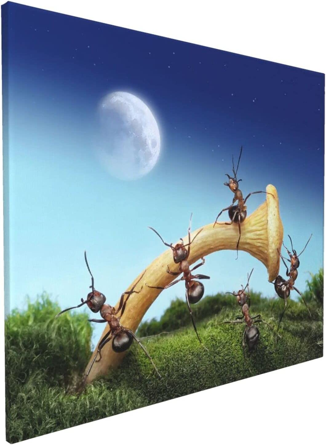 Missboom Wall Art Theme Funny Recommended Paint Painting Carrying Ant Spray Credence