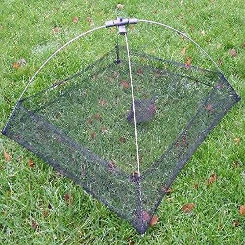 Anglerwelt24 Köderfischsenke Senke mit Fluchtrand 0,55 x 0,55 für schwierige Senkstellen (Modell Nr.3 grün)