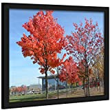 Medog 12x16 Inch Picture Frame Poster Frame for Pictures 12x16 Without Mat or with Mat(not Included) for Smaller Size-Safety high Transparent PC Sheet Non Glass Wall Mounting (P1J 1216 Black)