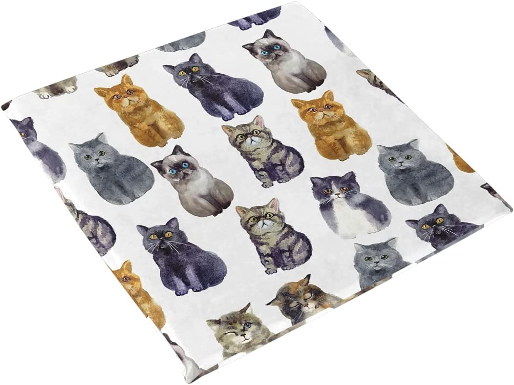 Cheap mail order shopping ALAZA Cute Cat Kitten Animal Prints for Cushion Year-end gift Chair O Seat Pad