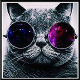 No-branded DIY Diamante Pintura 30x30cm vidrios del Gato DIY 5D Diamante Bordado Full Circle Diamantes de imitación Cristal de Mosaico Hecho a Mano la decoración del hogar Kits de Bordado QPLNTCQ