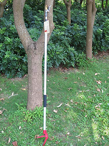 Mesoga 7.6-13 Foot 2 Sections Extendable Tree Trimmers with 4 Nodes Adjustment, Cut and Hold Pruners, Long Reach Pole Saw Pruning Shears, Telescopic Fruit Picker, Branch Clippers Garden Bypass Loppers