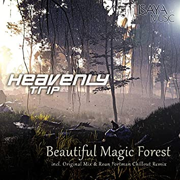 Beautiful Magic Forest