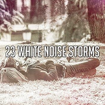 23 White Noise Storms